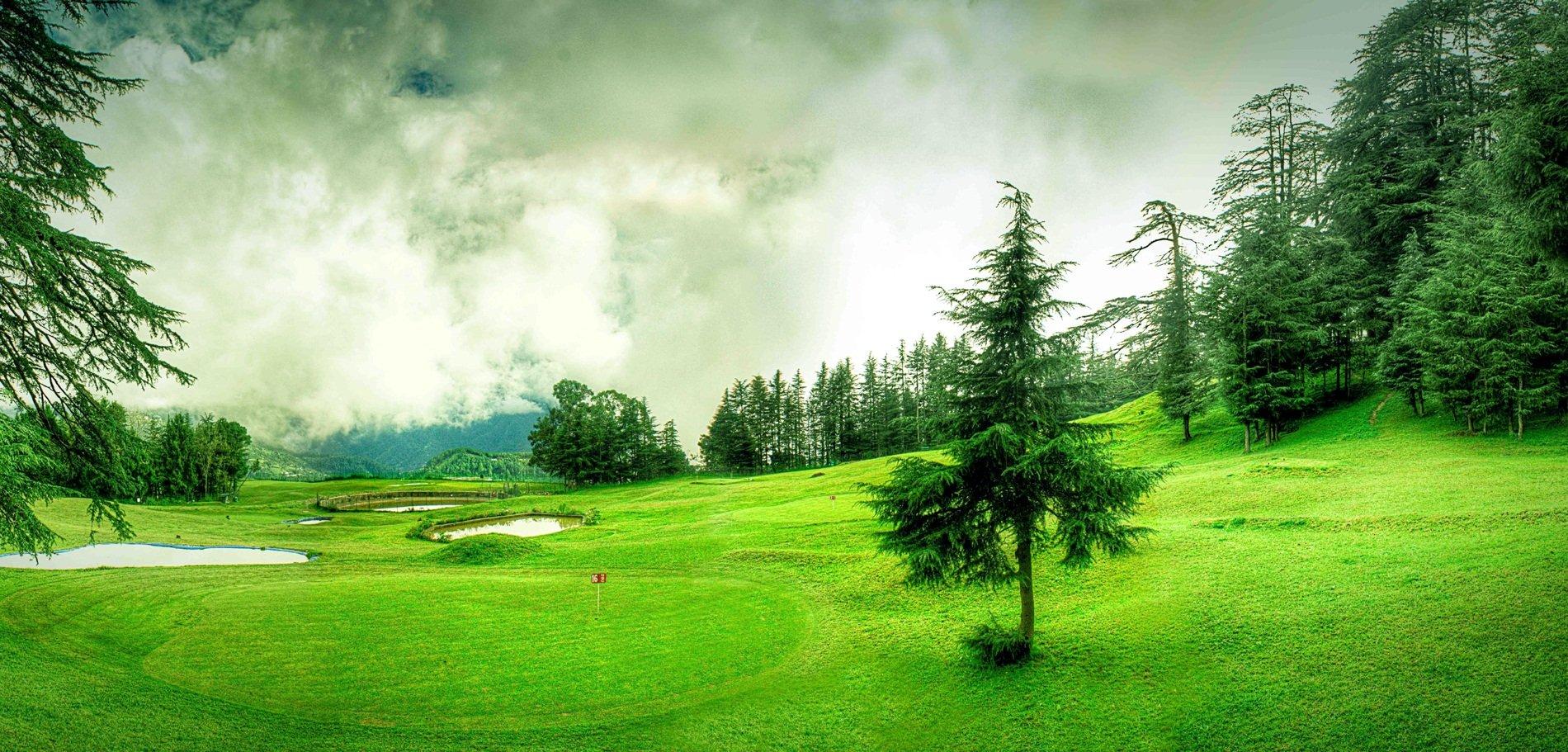 Naldehra - Shimla